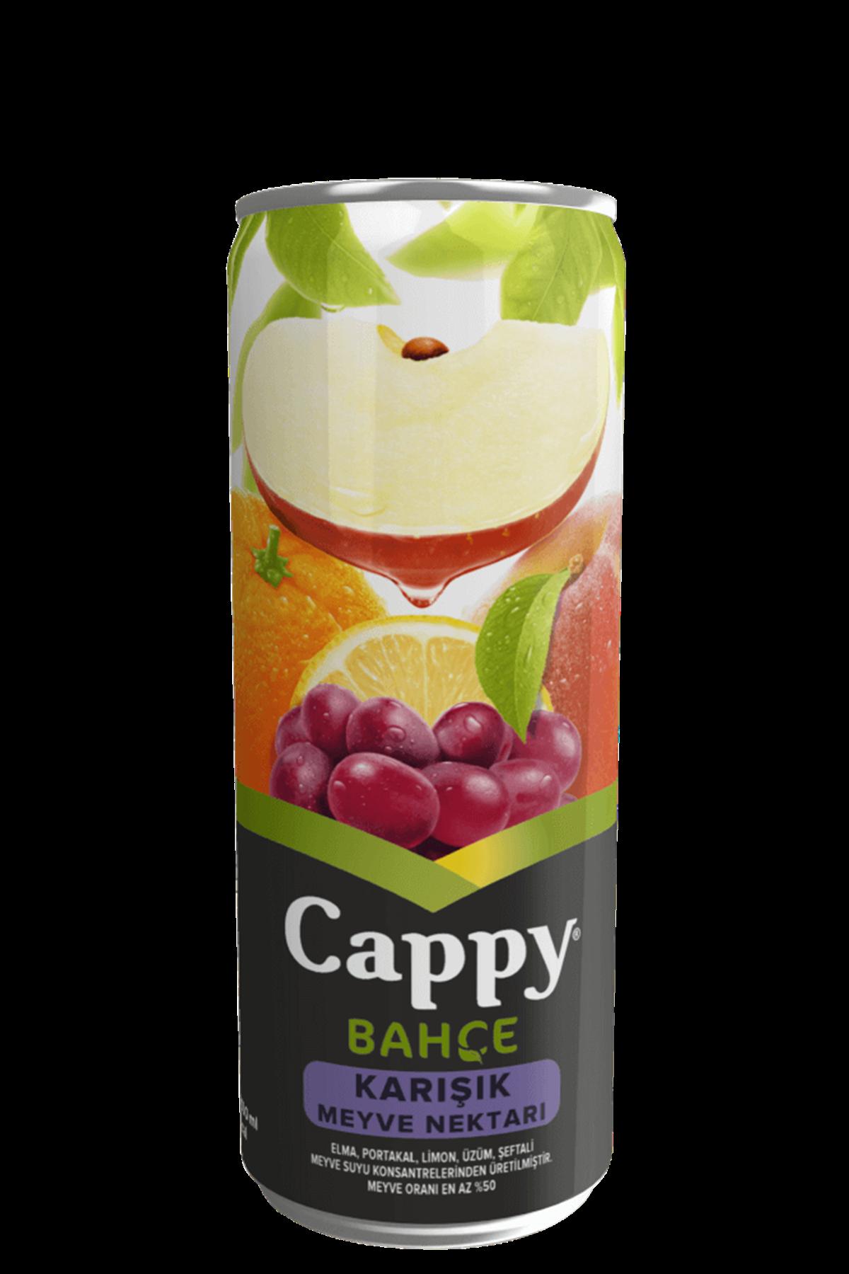 CAPPY KARIŞIK - 330 ml